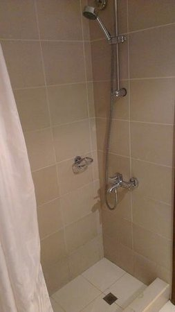 Auris Lodge: Shower