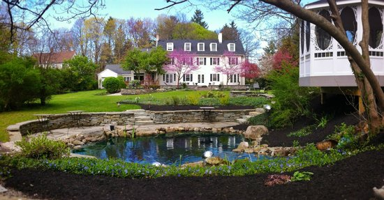 10 Fitch Luxurious Romantic Inn: 10 Fitch Back Yard in Spring