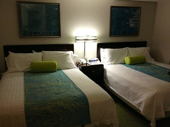 SpringHill Suites Billings: room