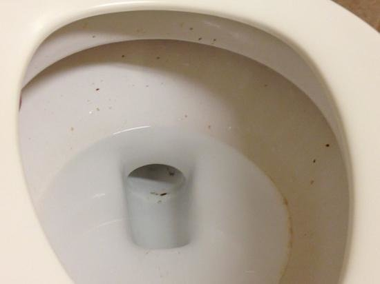 Residence Inn Phoenix Mesa: the bathroom in lobby was dirty: all 4 days I stayed there it was never cleaned.