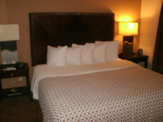 Embassy Suites Dallas-Market Center: bedroom