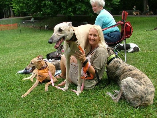 Sidney James Mountain Lodge: At Maynatt Park with the greyhounds!