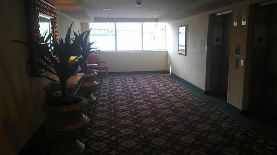 Radisson Hotel Orlando - International Drive: Nice Elevator Waiting Area