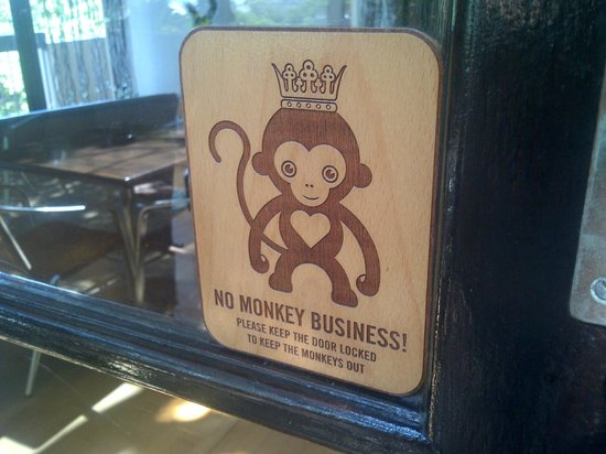 Teremok Marine: Love the monkey