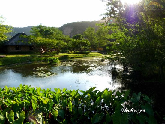 Stanger, Sudfrica: The pond surrounding the Main reception and eating area