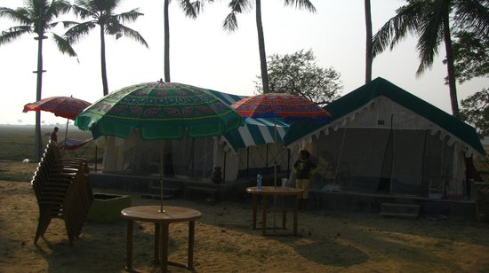 ... Bhitarkanika Jungle Resorts, Bhitarkanika National Park - TripAdvisor