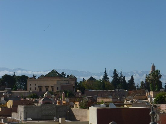 ‪‪Dar Warda‬: the view from the terrace‬