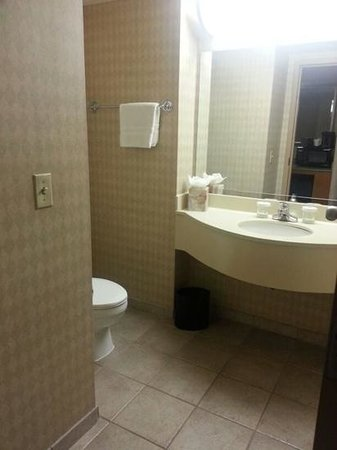 Embassy Suites Newark - Wilmington/South: bathroom