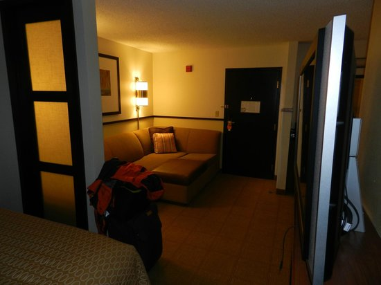 Hyatt Place Sterling/Dulles Airport-North: gemtliche Sitzecke