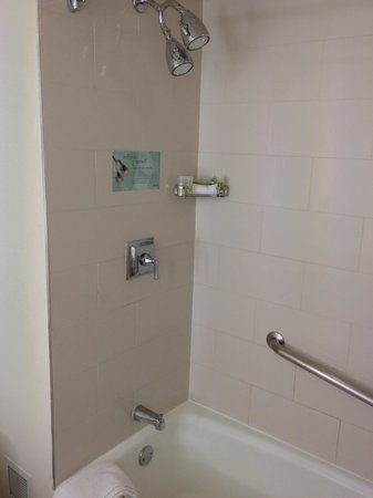Westin New Orleans Canal Place: Very nice bath with double showerheads, adequate to take a soaking bath. Date of stay: April 2,