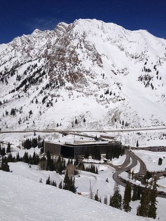The Cliff at Snowbird, March 2013