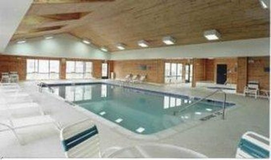 Hawthorn Suites by Wyndham Ann Arbor: Pool