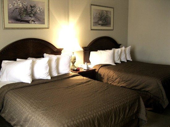 BEST WESTERN PLUS Memorial Inn & Suites: Double Queen