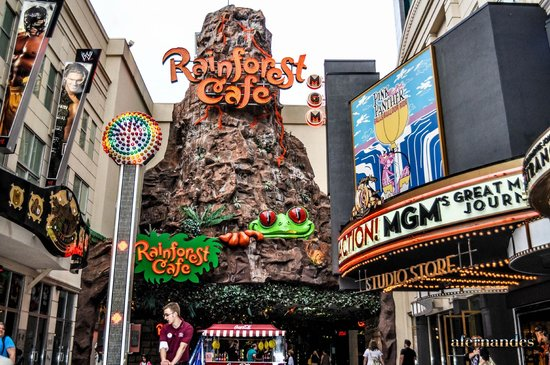 Canada Rainforest Cafe