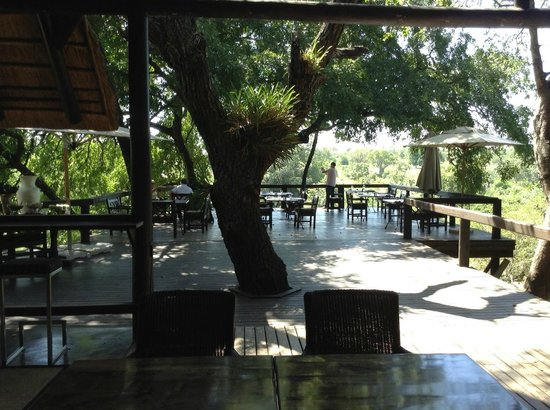Londolozi Tree Camp: Dining deck at Tree Camp