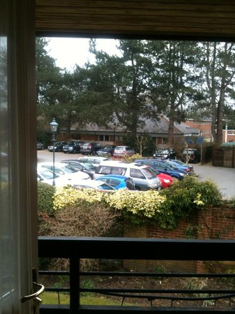 Careys Manor Hotel & SenSpa : A garden view ?