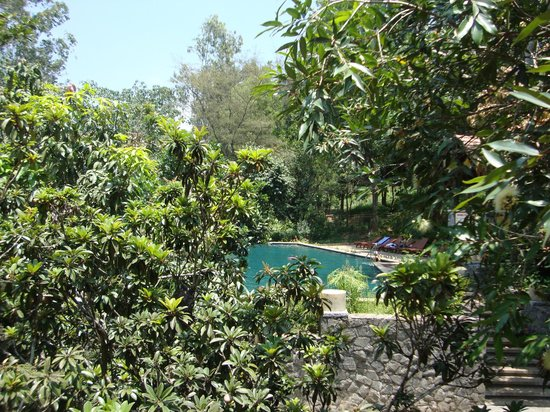 Club Mahindra Kodagu Valley: The pool