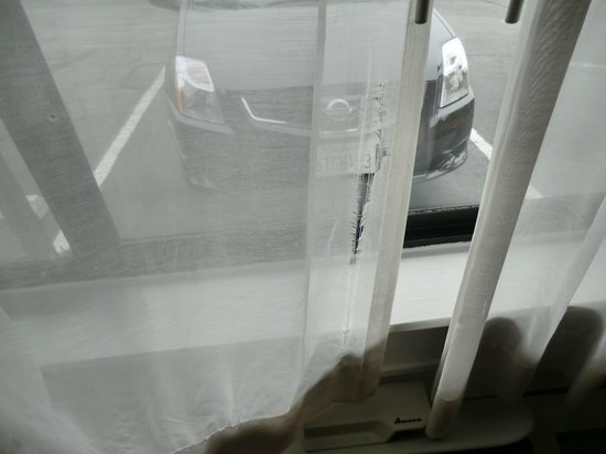Econo Lodge Monterey Fairgrounds: Torn Curtains