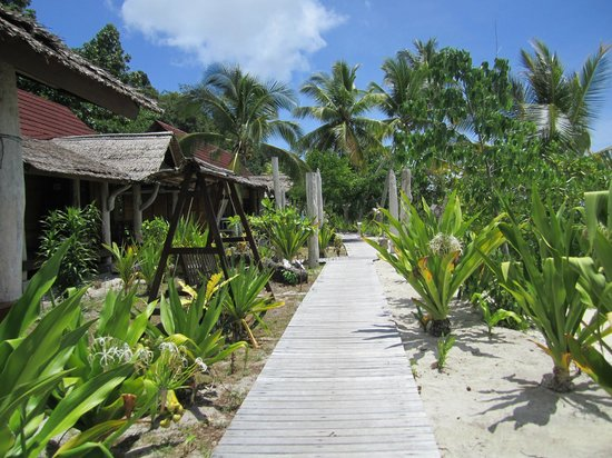Raja Ampat Dive Lodge: Wooden walkway from bungalow to dining area