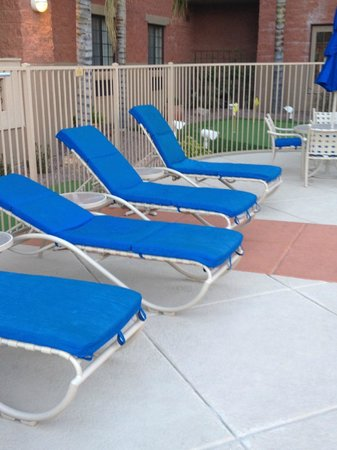 Varsity Clubs Of America - Tucson: pool chairs