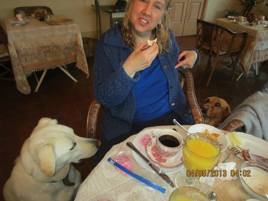 Borgo Argenina Bed and Breakfast: Breakfast with Josephina and Pasqulena. Perfect breakfast
