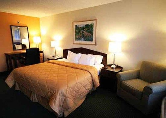 Comfort Inn University: Standard Room (OpenTravel Alliance - Guest room)