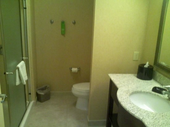 Hampton Inn &amp; Suites Rogers: Bathroom