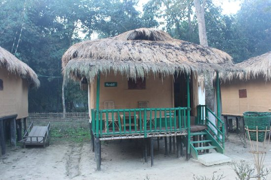 Nature-Hunt Eco Camp Kaziranga: The cottage i stayed in
