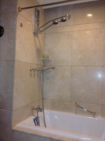 Radisson Blu Hotel Shanghai New World: shower with dual heads