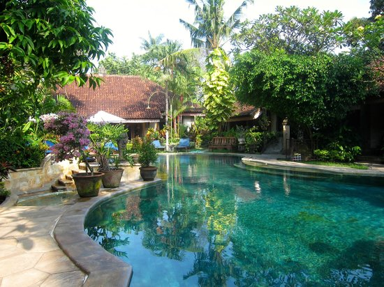 Tamukami Hotel: Swimming Pool
