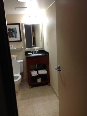 Wyndham Garden Hotel - Philadelphia Airport: vanity area