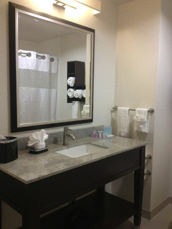 Trophy Club, TX: Guest Bathroom