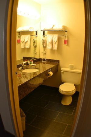 Ramada Edmonton International Airport: bathroom