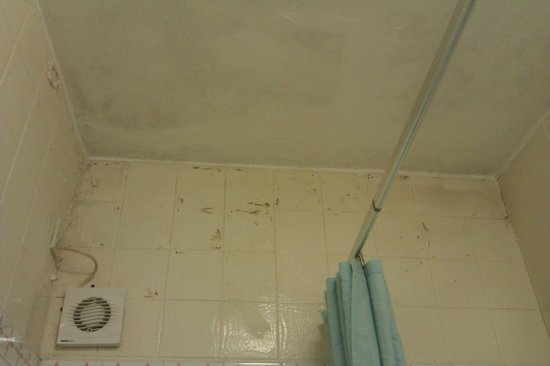 Park Hotel London: Peeling bathroom tiles