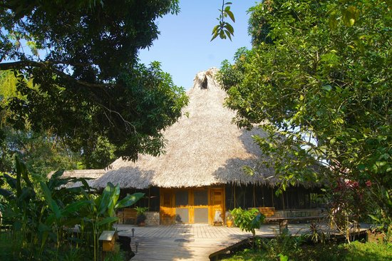 Cotton Tree Lodge: Main Lodge