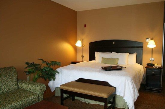 Hampton Inn & Suites Houston-Rosenberg: King with Sofabed