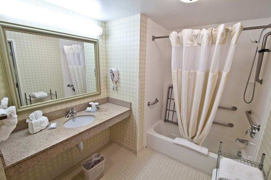 Hilton Garden Inn Raleigh Triangle Town Center: Accessible Guest Room Bathroom