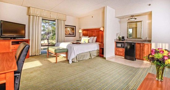 Hampton Inn Wilmington-University Area/Smith Creek Station : King Suite