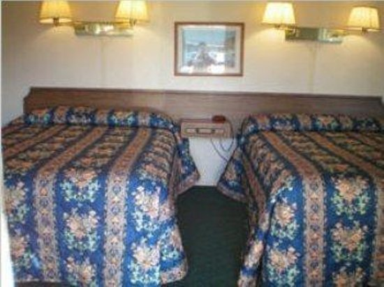 Estero Bay Motel: Guest Room
