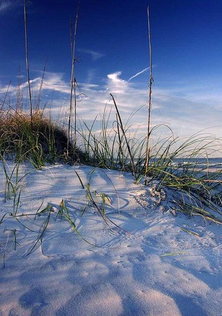 Hampton Inn & Suites Panama City Beach-Pier Park Area: Panama City Beach