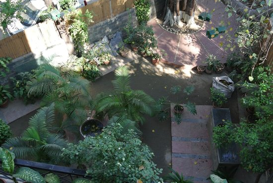 Saubhag Bed and Breakfast: courtyard garden