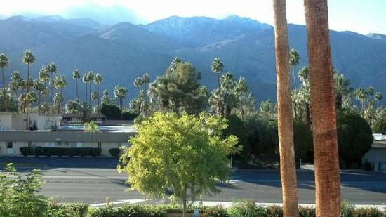 The Saguaro Palm Springs, a Joie de Vivre Hotel: View from room