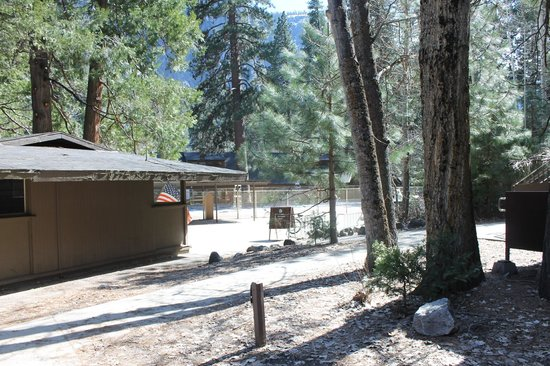yosemite falls from the meadow picture of yosemite lodge. Black Bedroom Furniture Sets. Home Design Ideas