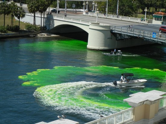 Sheraton Tampa Riverwalk Hotel: Quiet rooms kept out the St. Patrick day celebrating noises