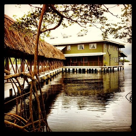 Laguna Azul Eco Lodge: Laguna Azul. Find a hammock and relax.
