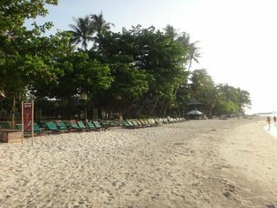 Baan Chaweng Beach Resort & Spa : where you lie and relax