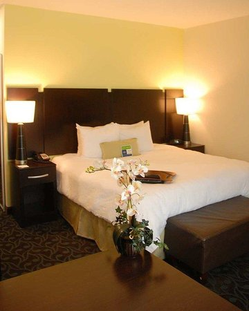 Hampton Inn Monticello, AR: King Guestroom