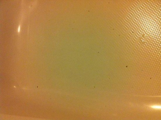 Fairbridge Inn Express: Whirlpool Tub - this is just some of the dirt  - most of it rinsed down the drain before I took