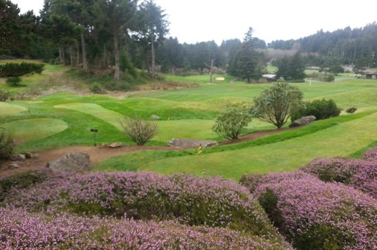 ‪‪Gleneden Beach‬, ‪Oregon‬: Pic from the deck onto the golf course‬