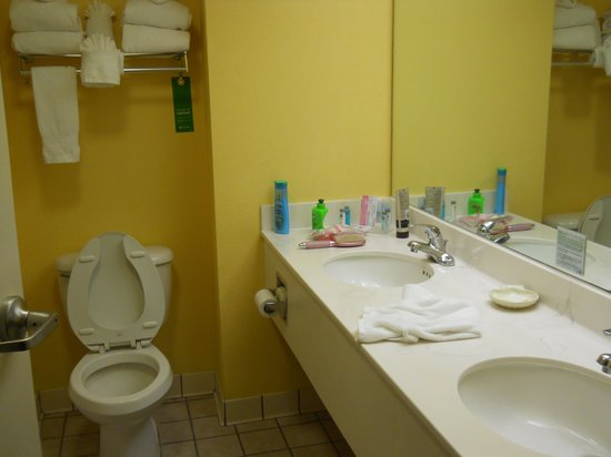 Hampton Inn Cocoa Beach: Bathroom
